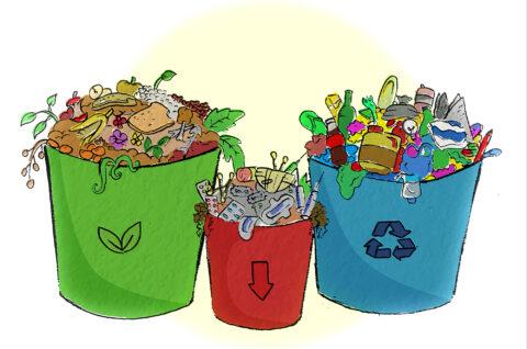 Module 2 waste segregation